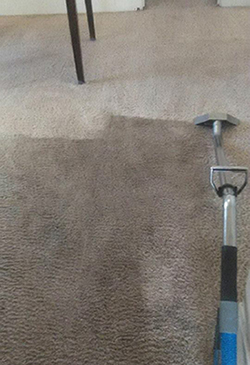 Carpet Cleaners El Paso County CO